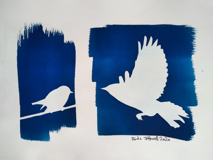 Hand made cyanotype prints of birds on watercolour paper. Original artwork by Jo Howell.